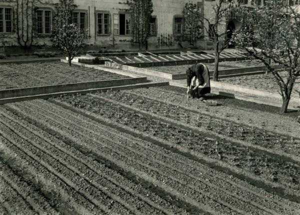 Gemüsegarten von dem Refektorium